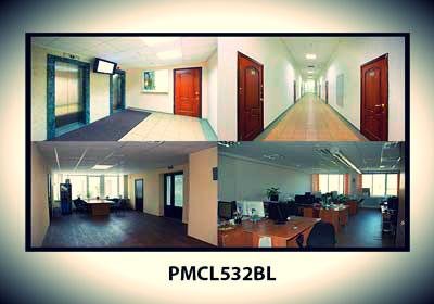 пример изображения с монитора Pelco PMCL532BL